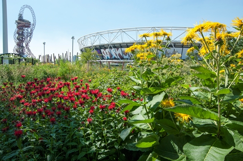 England - World Parks Week feature park: Queen Elizabeth Olympic Park, London