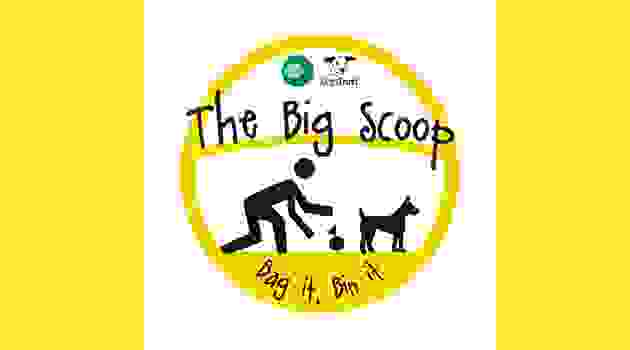 The Big Scoop campiagn 15 - 21 June