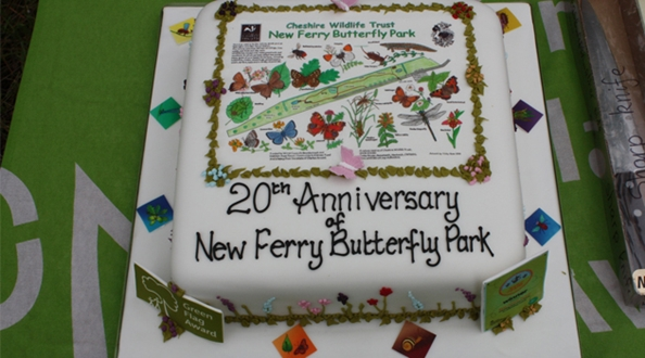 New Ferry Butterfly park celebrates 20 years